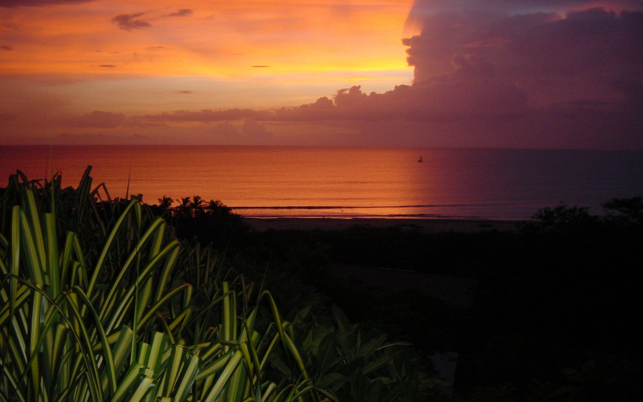Panoramic views & Wildlife - SUNSET HOUSE Tamarindo, Guanacaste, Costa Rica