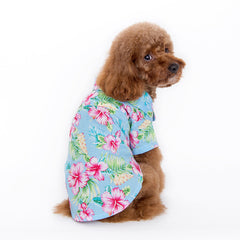 dog tropical shirt blue and dog