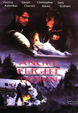 Angel Flight Down (1996) - Christopher Atkins