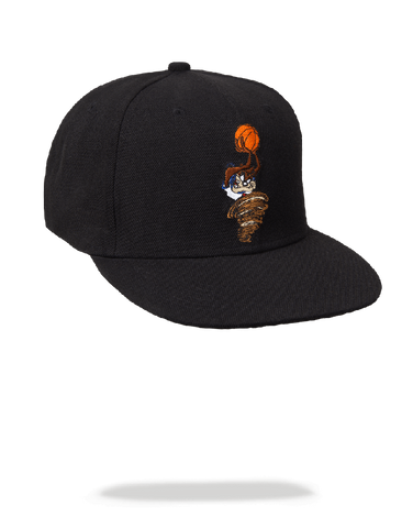 SPACE JAM TAZ SNAP BACK HAT
