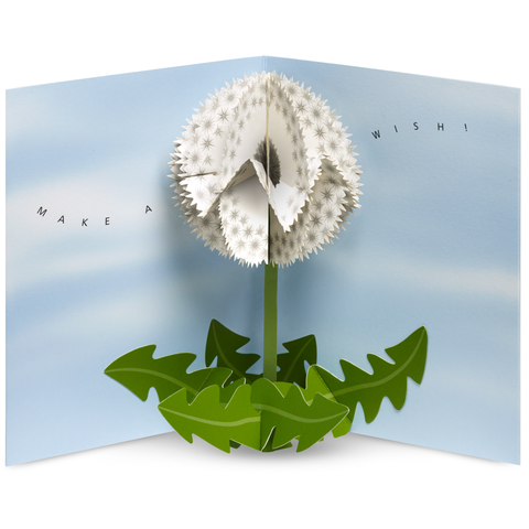 MoMA - Pop-Up Card - Dandelion Wishes