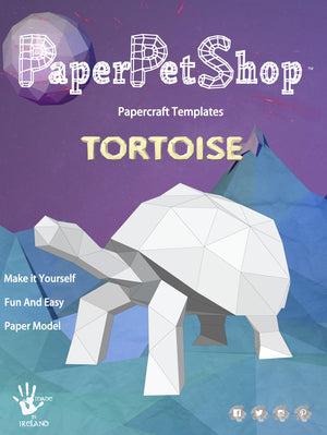 Paper-craft Tortoise gift