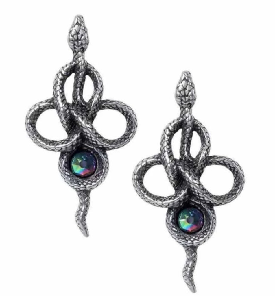 Image of the earrings