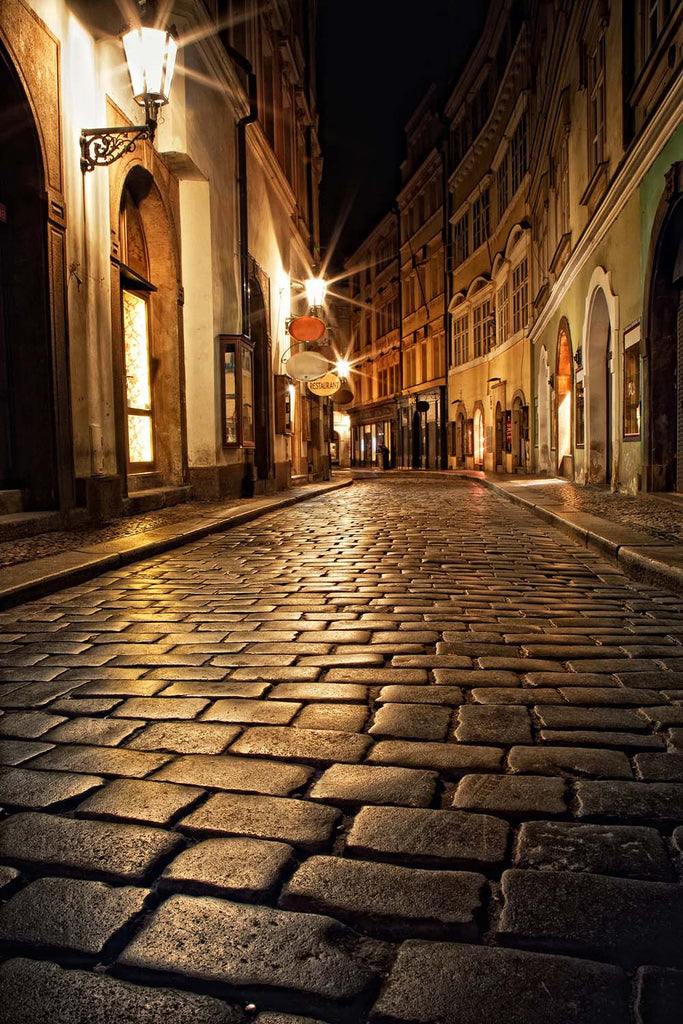 Street Alley At Night Vinyl Print