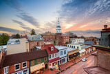 Annapolis, Maryland Harbor Vinyl Print