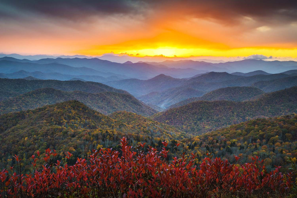 Blue Ridge Parkway Appalachian Mountains Landscape Vinyl Print