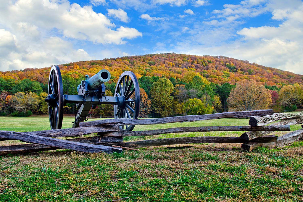 Cannon In Field Vinyl Print