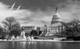 US Capitol & Reflecting Pool Black & White Vinyl Print