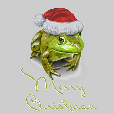 Frog With Santa Hat Christmas Vinyl Print