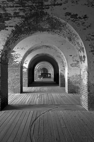 Fort Pulaski, Savannah, Georgia Black & White Vinyl Print