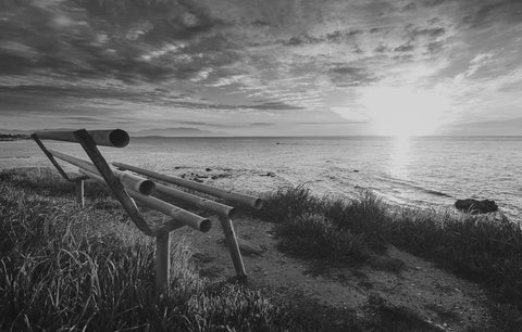 Ocean View Bench Black & White Vinyl Print
