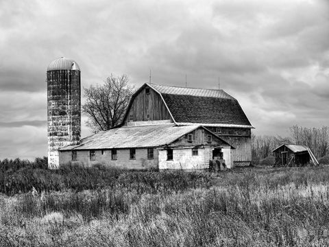 Old Barn Black & White Vinyl Print