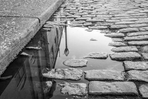 Rain Puddle On River Street, Savannah, Georgia Black & White Vinyl Print