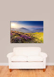 Rhododendron Flowers On Summer Mountain Vinyl Print