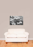 Tulips Black & White Vinyl Print