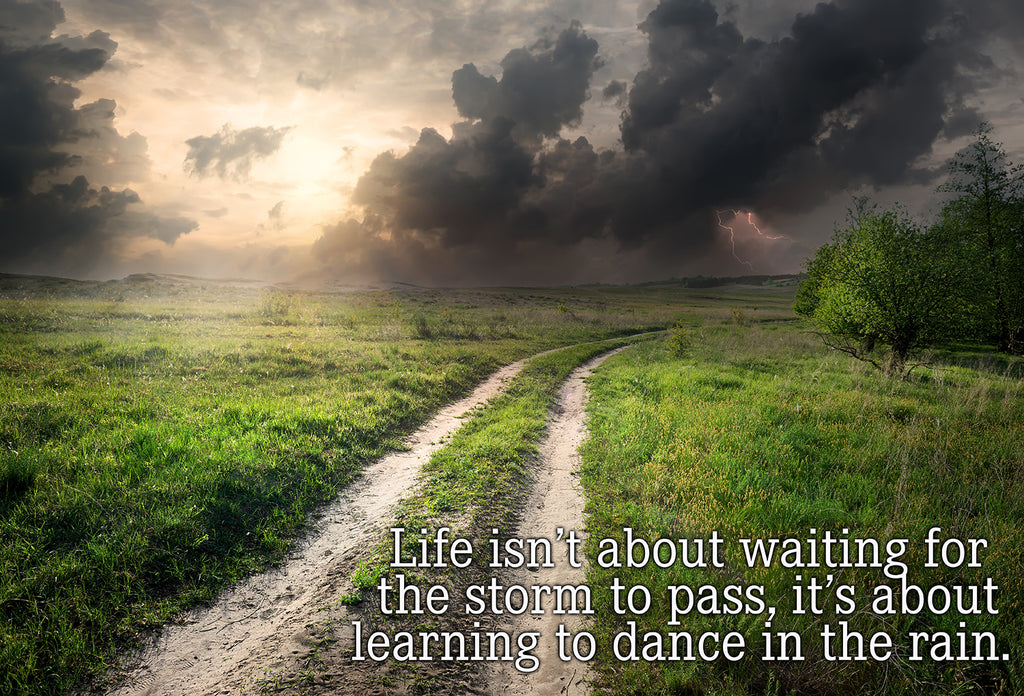 Life Isn't About Waiting For The Storm To Pass, It's About Learning To Dance In The Rain Vinyl Print