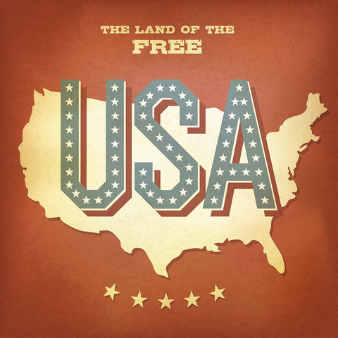 Land Of The Free Vinyl Print