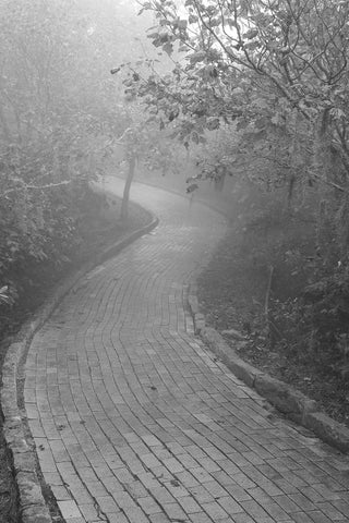 Yellow Brick Road, Beech Mountain North Carolina Black & White Vinyl Print