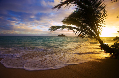 """Heavenly Sea"" Lanikai Beach, Oahu Hawaii Sailcloth Print"
