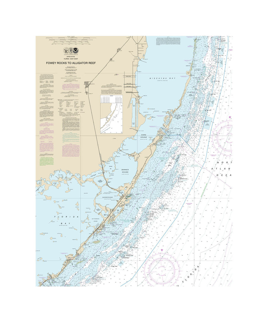 Fowley Rock Nautical Chart Vinyl Print