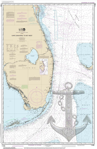 Cape Canaveral With Design Nautical Chart Vinyl Print