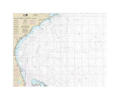 Cape Hatteras to Florida Straits Nautical Chart Vinyl Print