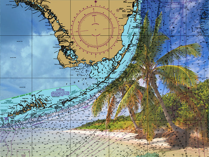 Florida Keys - Palm Trees On The Beach Nautical Chart Vinyl Print