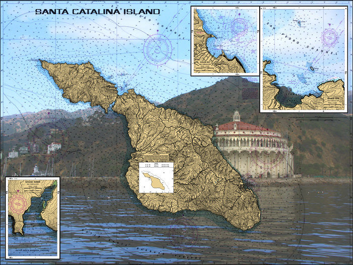 Avalon At Santa Catlina Island Nautical Chart Vinyl Print