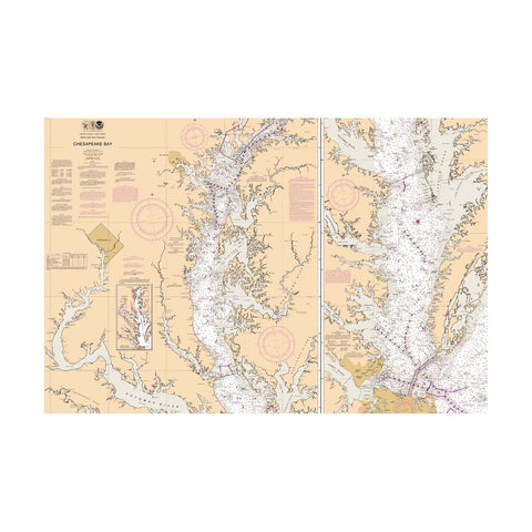 Antique Look Chesapeake Bay Nautical Chart Vinyl Print