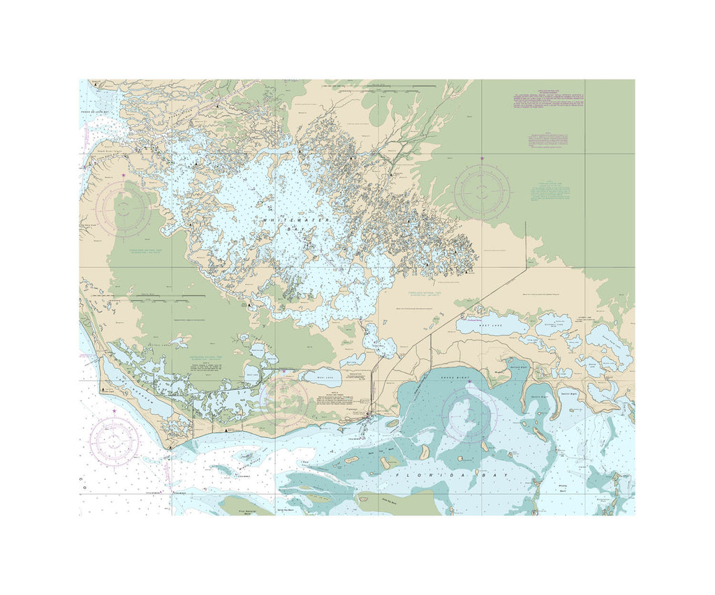 Everglades National Park Nautical Chart Vinyl Print