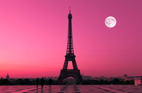 Eiffel Tower Paris Moonlight Vinyl Print