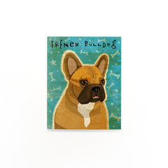 Fawn and White French Bulldog Art by John W. Golden