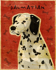Dalmatian Art by John W. Golden
