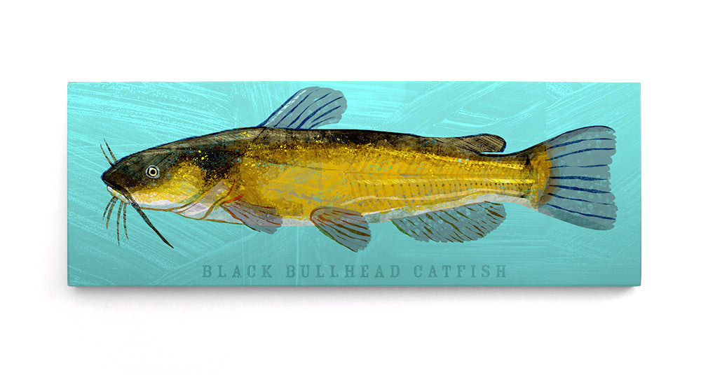 Black Bullhead Catfish Picture Art Block by John W. Golden