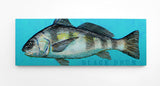 "The Bigger One- Extra Large Saltwater Fish Art Block- Pick the Print- 7.6""x 21"""