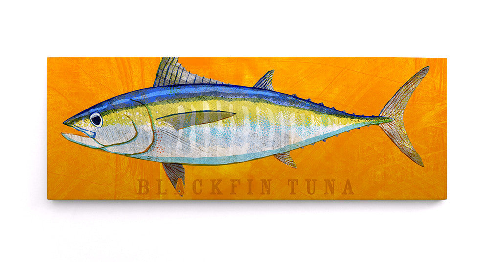 Blackfin Tuna Art Block by John W. Golden