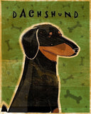 Black and Tan Dachshund Art by John W. Golden