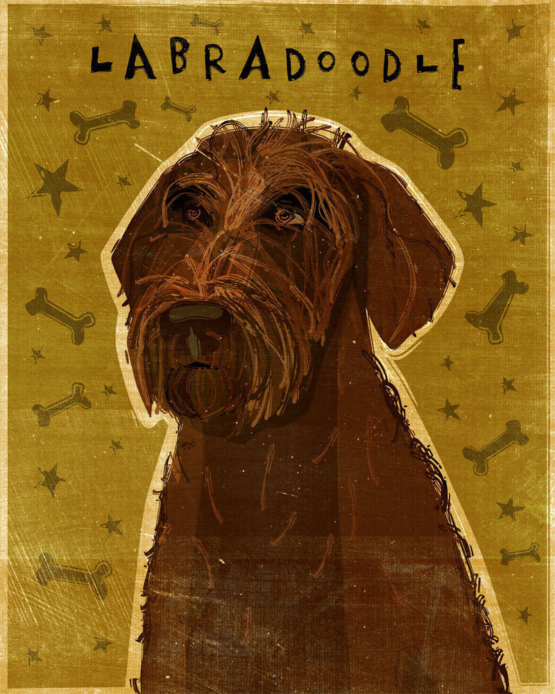 Chocolate Labradoodle Art by John W. Golden