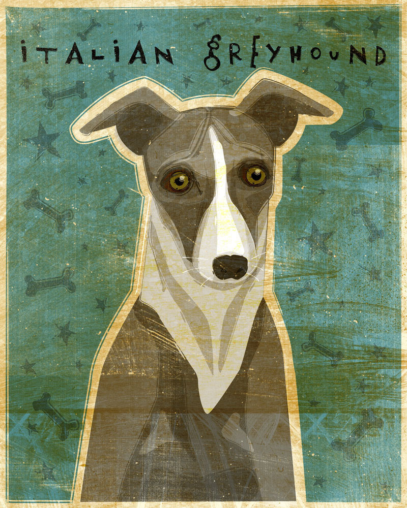 "Italian Greyhound Print (Blue or Gray)- 8"" x 10"""