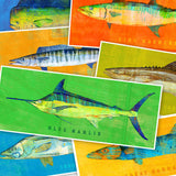 Saltwater fish prints by Marine Artist John W. Golden