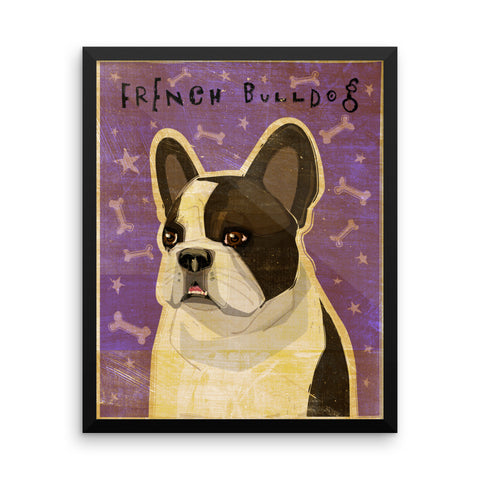 White and Black French Bulldog Framed poster