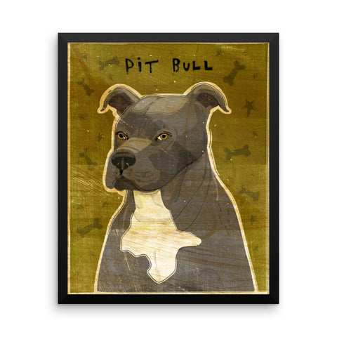 Blue and White Pit Bull Framed poster