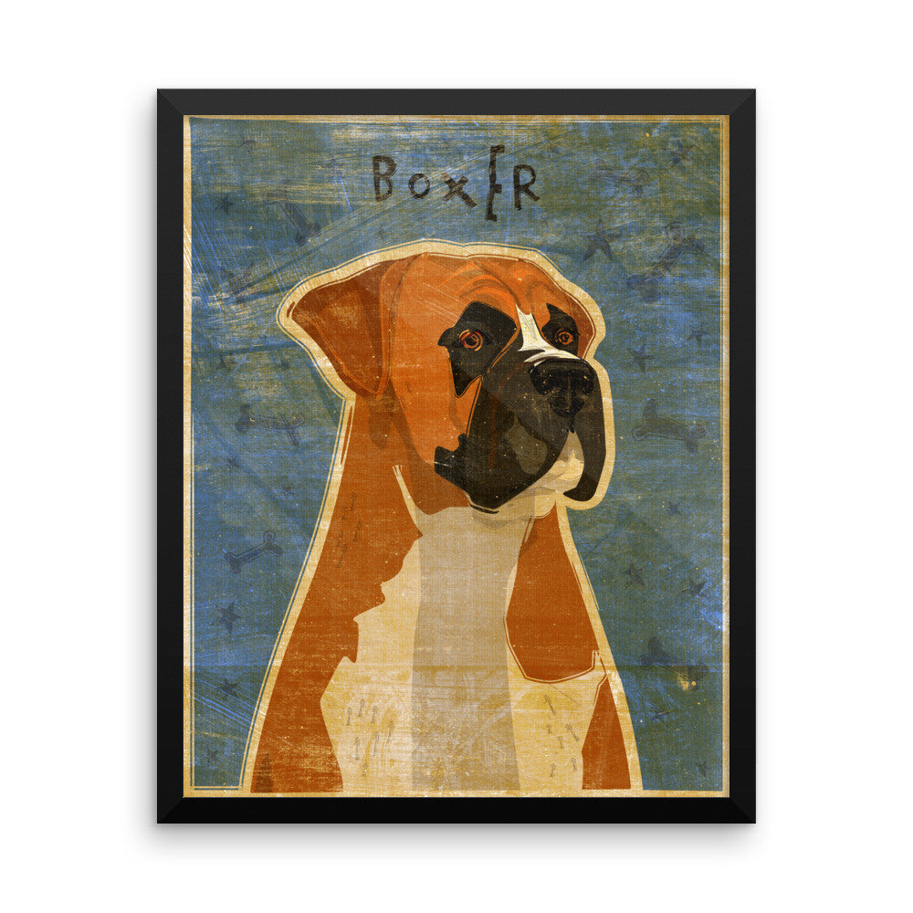 Fawn Boxer Framed poster