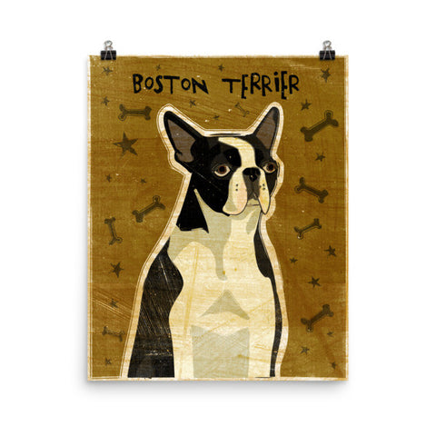 Boston Terrier Unframed Poster