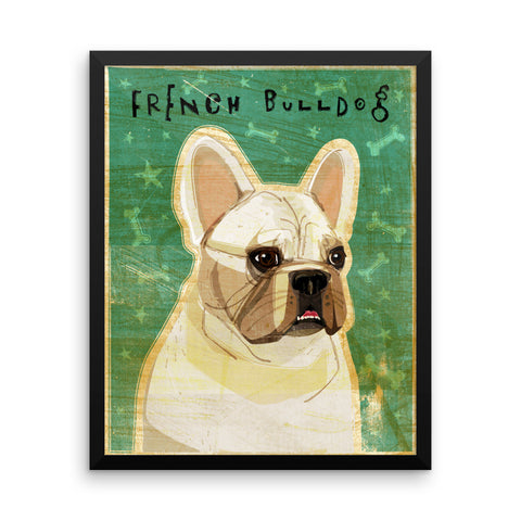 White French Bulldog Framed poster