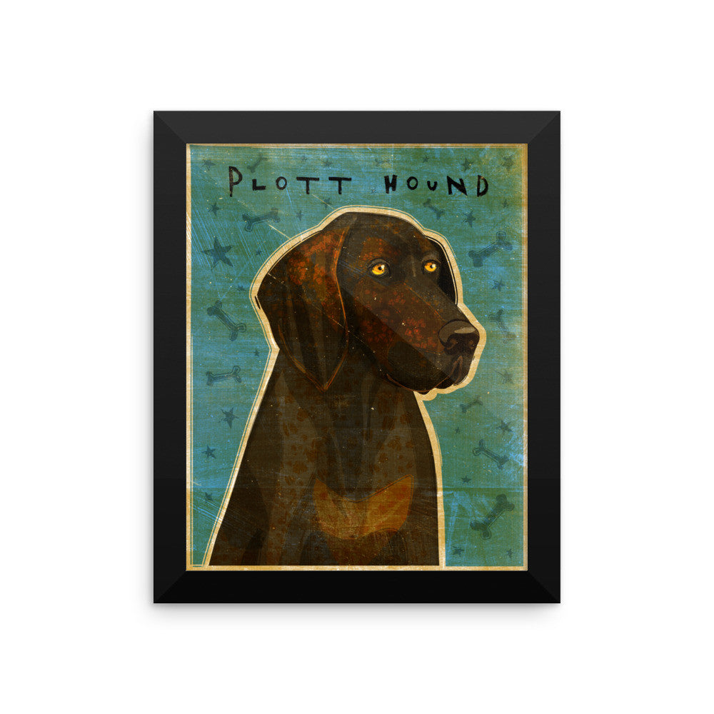 Plott Hound Framed poster