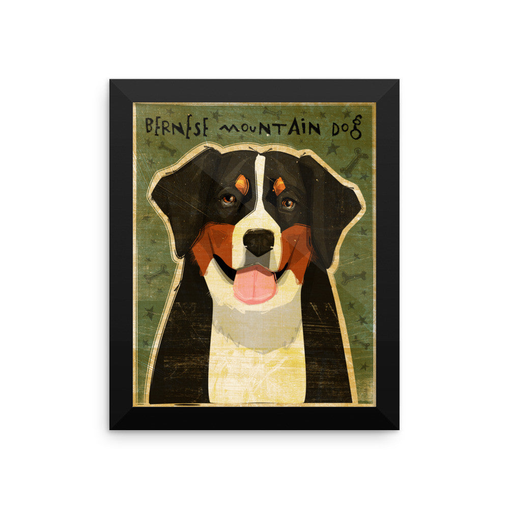Bernese Mountain Dog Framed poster