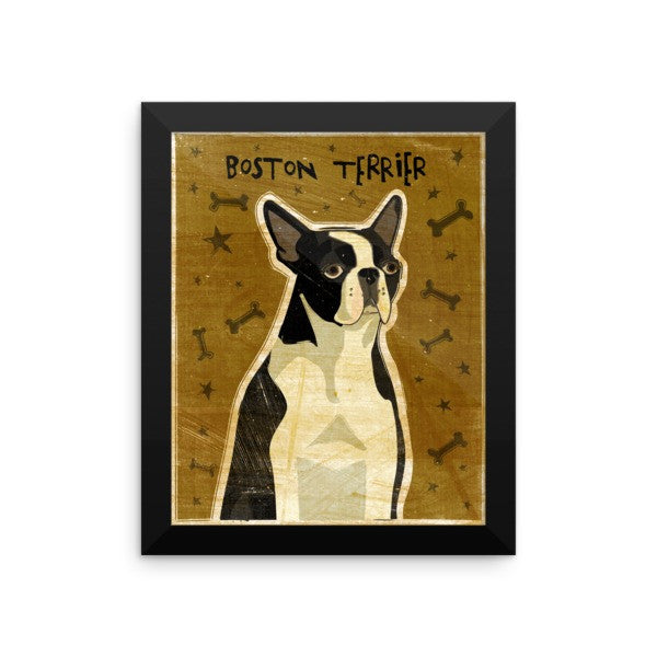 Boston Terrier Framed Poster