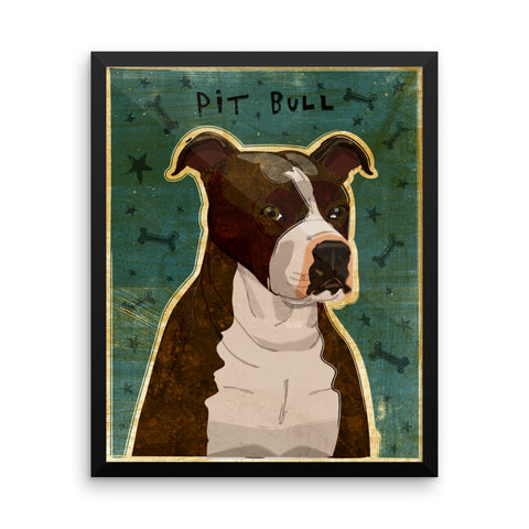 Brindle and White Pit Bull Framed poster