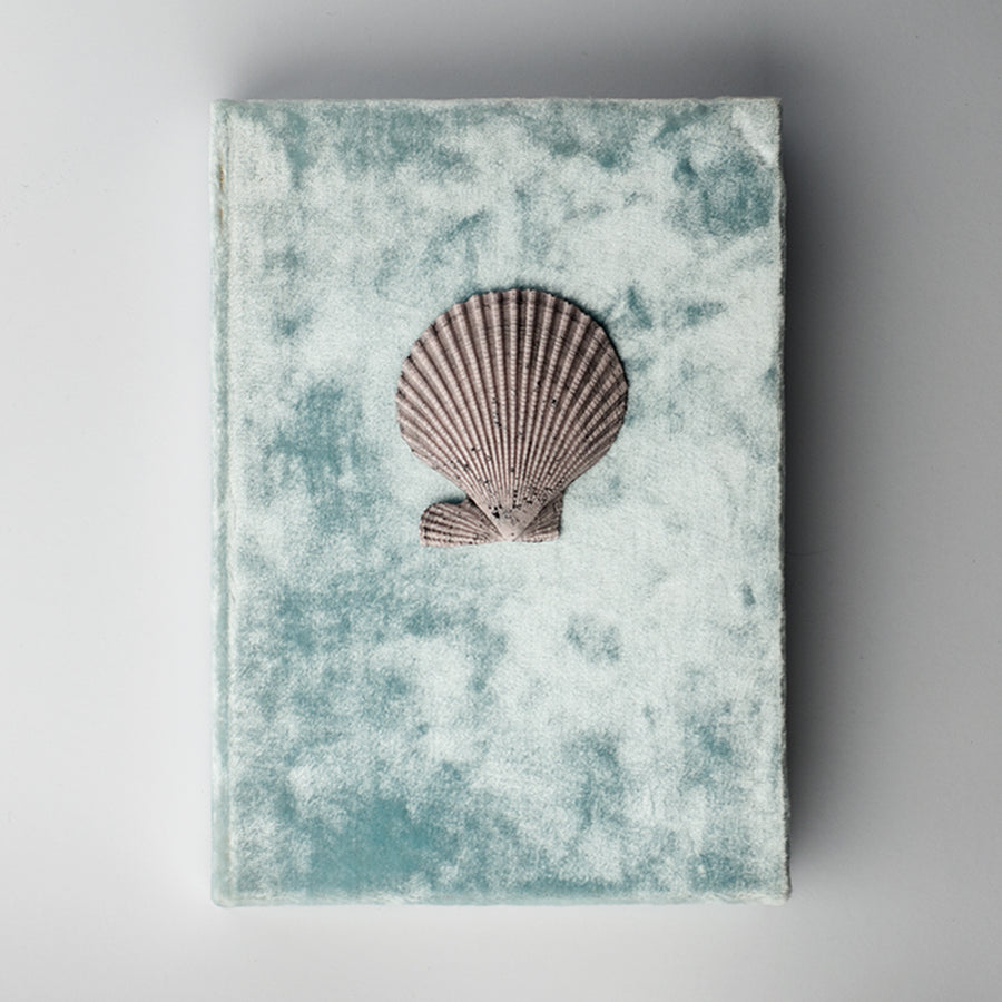 SCALLOP NOTEBOOK